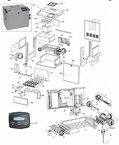 Jandy Lxi Low Nox Gas Heater  2008 U2013present  Parts