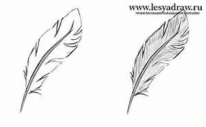 Dessin De Plume Facile : bildergebnis f r feder zeichnen fl te zeichnen pinterest zeichnen fl te und ergebnisse ~ Melissatoandfro.com Idées de Décoration