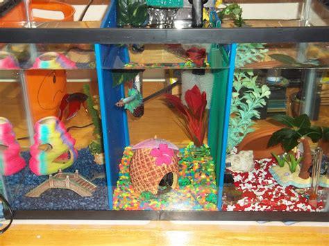 diy mesh aquarium dividers petdiyscom