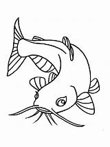 Coloring Catfish Fish Printable Minecraft sketch template