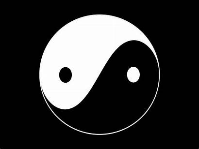 Yin Yang Dribbble Significado Grande Nick Hutchings