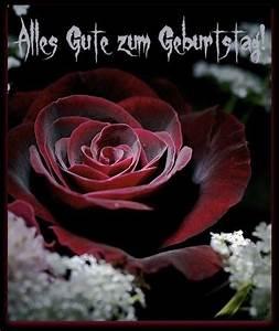 Schöne Bilder Geburtstag : sch ne rote rose alles gute zum geburtstag geburtstagsbilder geburtstagsgr e ~ Eleganceandgraceweddings.com Haus und Dekorationen
