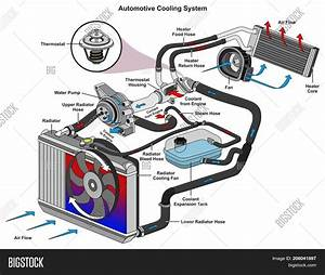 Automotive Cooling Image  U0026 Photo  Free Trial