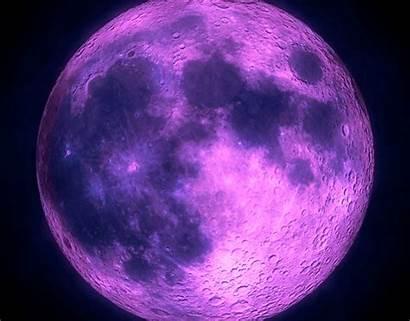 Moon Purple Url