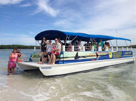 fort myers beach dolphin tours good time charters