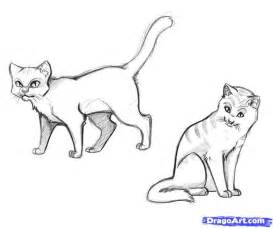 warrior cat drawings realistic cat drawings how to draw warrior cats step by