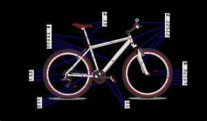 Bicycle Rear Axle Assembly Diagram  U2014 Untpikapps