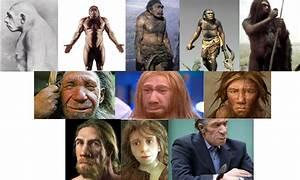 neanderthal | presbiter iohannes