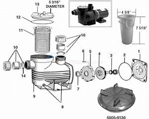 Waterco Aquamite Pump Parts