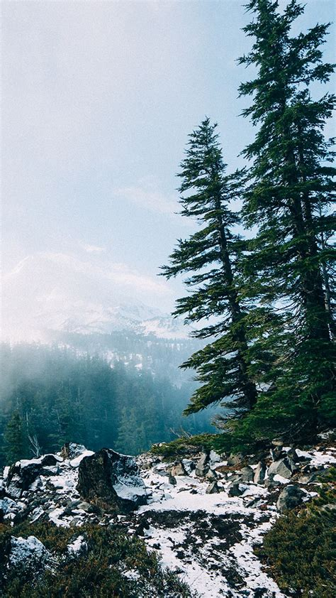 nature iphone wallpapers images  pinterest
