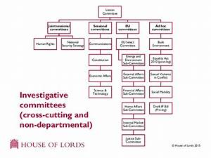 House of Lords Select Committees
