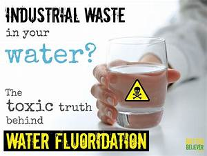 The Effects of Fluoride on Consciousness and the Will to ...