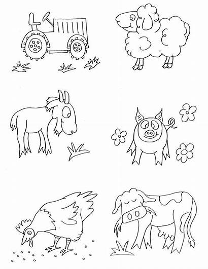 Coloring Pages Animal Animals