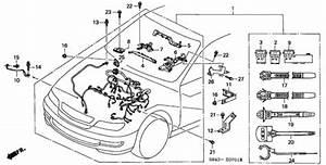 Engine Wire Harness  V6  For 1998 Honda Accord Sedan