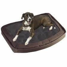 11bed medium With enclosed dog beds for medium dogs