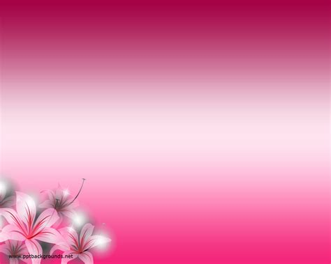 pink flowers backgrounds  powerpoint flower  templates