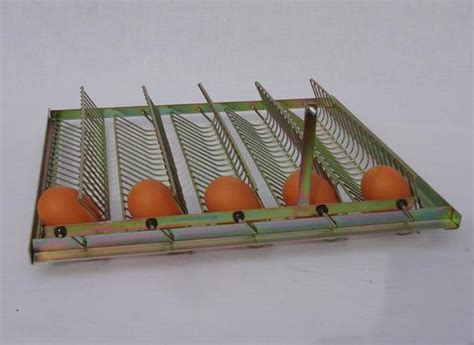 Broedmachine Egg Tray