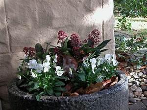 Kübel Bepflanzen Ideen : blumenkbel bepflanzen stunning blumenkbel bepflanzen angenehm pflanzgefe ihre adresse fr ~ Buech-reservation.com Haus und Dekorationen