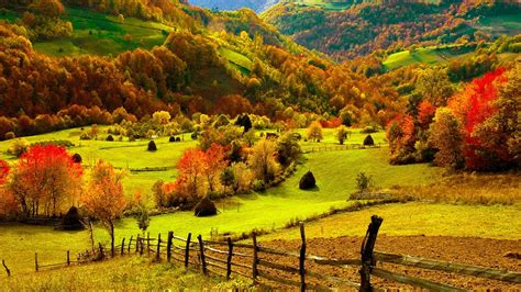 fall harvest wallpaper wallpapersafari