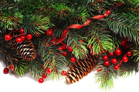 christmas tree lane  waterfront park louisville