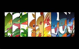 Sceptile Wallpapers - Wallpaper Cave