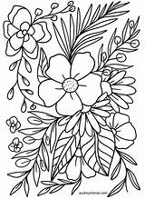 Coloring Floral Printable Flower Adults Simple Instant Bathroom Mylifeuntethered sketch template