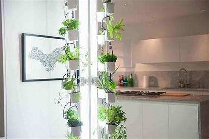 Indoor Gardening Garden System Inside Grow Modern