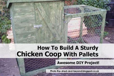 how to make chicken coop how to build a sturdy chicken coop with pallets