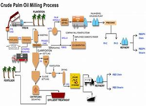 Manufacture Crude Palm Oil Production Process Low Cost