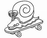 Snail sketch template