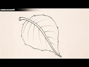 How to draw a leaf for kids - YouTube