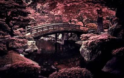 Japan Winter Desktop Wallpapers Garden Imperial