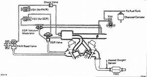 Need 1995 V6 Vacuum Hose Help