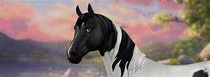 The Trakehner Star Stable Teasers Star Stable