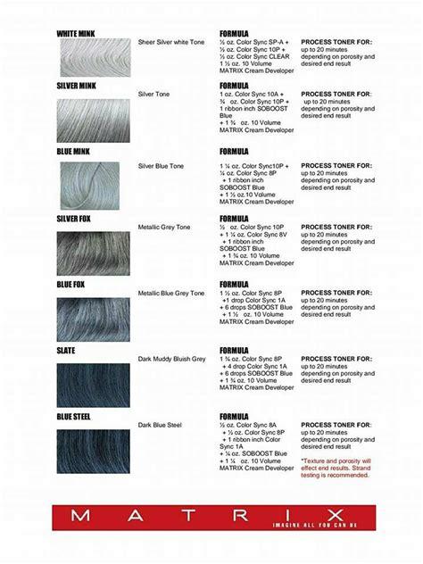 silver hair formulas using matrix elizabethjoannehair