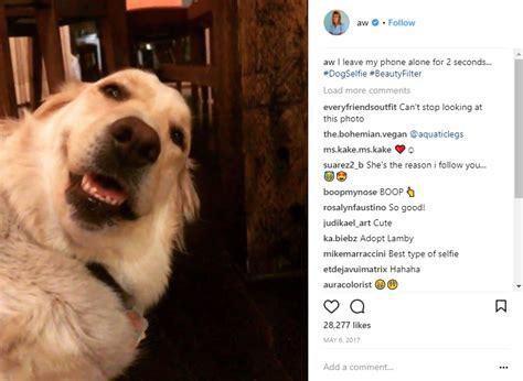 instagram captions   break   ometer