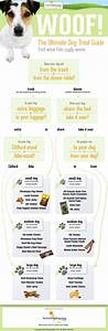 112 Best Dogs Infographics Images On Pinterest