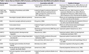 Genes That Are Linked To Asd In Humans  And That Have Been