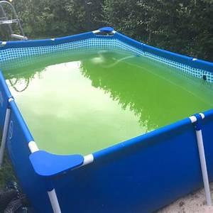 Poolwasser Ist Grün : ein kleiner swimmingpool f r den garten das solltet ihr ~ Watch28wear.com Haus und Dekorationen