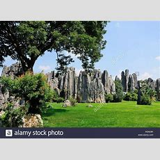 China Yunnan Stone Forest Famous Landscape Stock Photos
