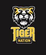 tiger nation logos epsvector