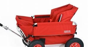 Bollerwagen Für Kleinkinder : rambler bollerwagen ausfl ge ~ Michelbontemps.com Haus und Dekorationen