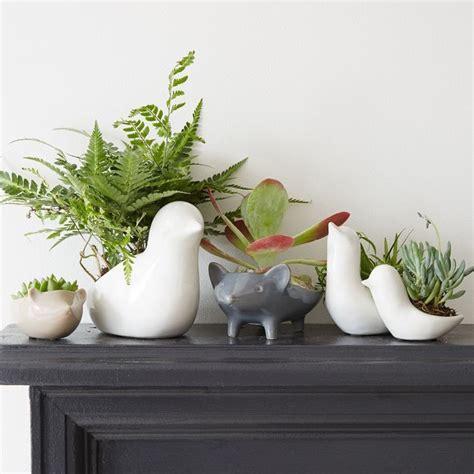 ceramic animal planters contemporary indoor pots and