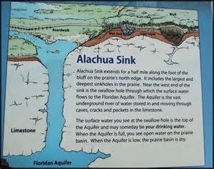 gc5h0bx the alachua sink earthcache in florida united