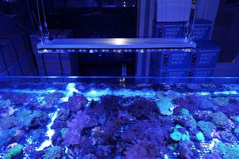 Ripley Aquarium Of Canada Lighted By Orphek •orphek