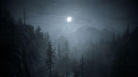 Dark Forest Backgrounds  Wallpaper Cave