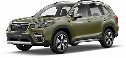 Subaru Suv Range Discover Right Which Unsure
