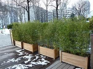 jardiniere de bambous pendant la mauvaise saison terrasse With bac pour bambou terrasse