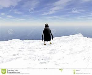 Pingouin Sur La Banquise : pingouin photographie stock libre de droits image 2938877 ~ Melissatoandfro.com Idées de Décoration