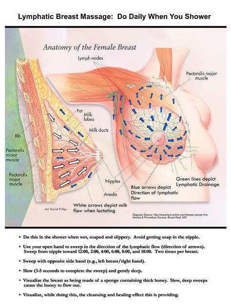 Home Holistic Breast Health